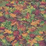 Thumbnail Image mtn-quilting_treasures.jpg
